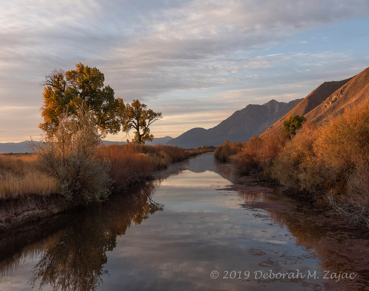 Fall Morning Carson Valley 2019