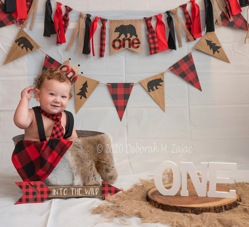 Landon's 1st Birthday Photoshoot