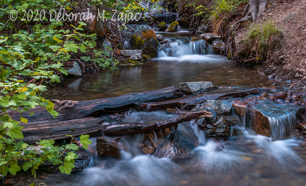 Stream in the Genoa Canyon
